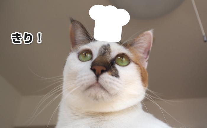 ラディッシュを調理するシェフおいちさん